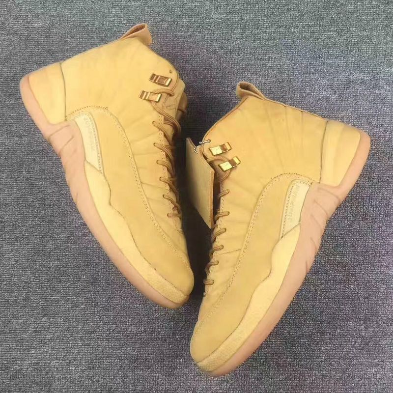 2017 Air Jordan 12 All Brown Shoes