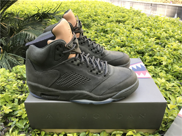 Air Jordan 5 Take Flight Shoes