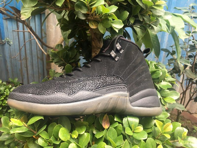 New Release Air Jordan 12 Owl Black Shoes
